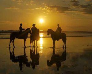 Andar de Cavalo na Costa do Estoril, Portugal