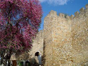 Castillo de Serpa, Alentejo, Portugal