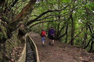 Pedestrianismo na Madeira, Levada do Furado