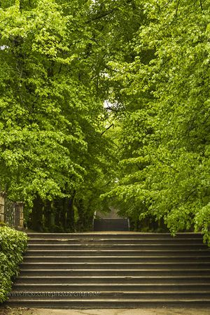Coímbra Botanic Museum
