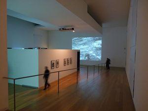 Museu de Arte Contemporânea Serralves, Porto