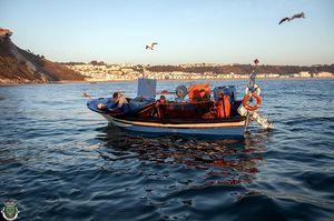 Pesca Artesanal, Nazaré, Portugal