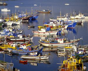 Fishing port of Sesimbra