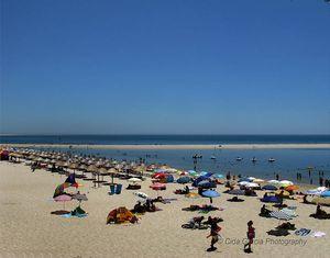 Playa da Figueirinha, Setúbal