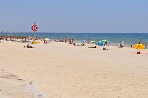 Praia da Lota