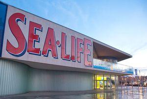 Sea Life Porto (Aquarium)