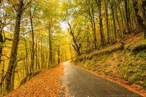 Pedestrianismo e ciclismo no Parque Nacional da Peneda-Gerês