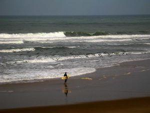 Surf Sintra