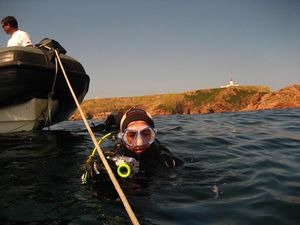 Diving in Berlenga